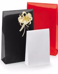 50 bitar Gloss Papper Presentpåsar med adhesiv remsa och undre block 10x15,7x4 of 14x23x5,5cm